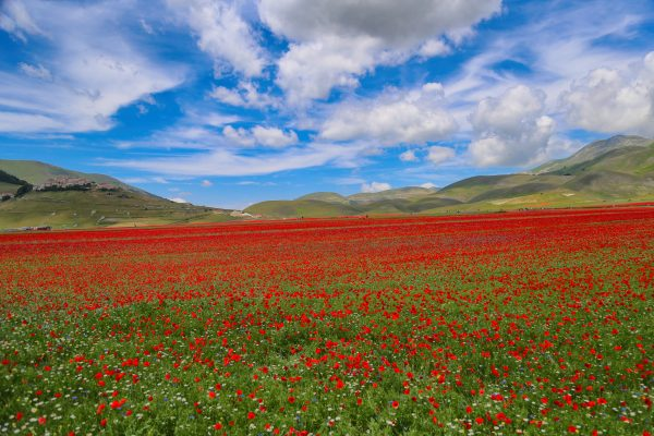 castelluccio 4 scaled e1602409220285