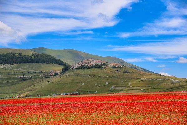 castelluccio 6 scaled e1602409200785