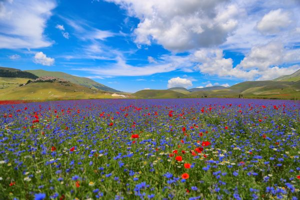 castelluccio 7 scaled e1602409186584