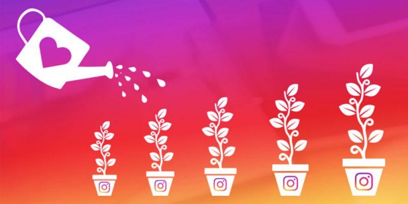 come crescere su instagram il posizionamento title